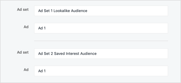 Name your ad sets according to the audiences you're testing.