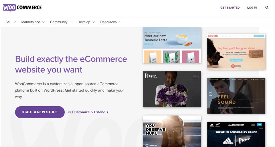 The WooCommerce plugin.